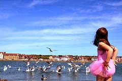 let's dance... (Eda Tanses) Tags: blue sea england seagulls west girl dance kirby unitedkingdom seagull unicorn eda tases icimdekibaliklar