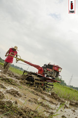 Araro 05 (Soil Cultivation) (ilusyonimages) Tags: street asian photography asia rice farmers farm traditional philippines farming images soil illusion crop filipino ricefields cultivation handtractor ilusyon