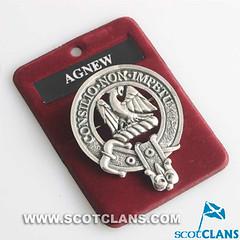 agnew-badge