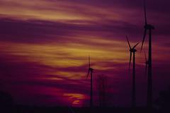 Wind Power Sunset (Minolta Dynax 505si, DM Paradies 400) (baumbaTz) Tags: sunset cloud film clouds germany deutschland nikon sonnenuntergang minolta iso400 atl wolken windmills scanned pentacon coolscan dm underexposed windpower 2200 windkraftanlage 2014 200mm windmühle niedersachsen lowersaxony paradies c41 jobo unterbelichtet windmühlen 505si autolab windkraftanlagen ls40 nikoncoolscan4000ed minoltadynax505sisuper dmparadies400 joboautolabatl2200