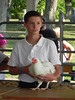 """Poultry 2014 • <a style=""""font-size:0.8em;"""" href=""""http://www.flickr.com/photos/78989085@N02/14691256327/"""" target=""""_blank"""">View on Flickr</a>"""