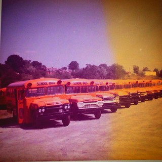 School Buses, NC.  First two buses are 1959 Hackney Bus Bodies on Ford Chassis; the third bus is a 1958 (Wayne Bus Body?) on Chevrolet Viking chassis. #1958 #1959 #schoolbus #hackney #thomasbuiltbus #chevroletviking #ford #nc #statesvillenc #iredellcounty