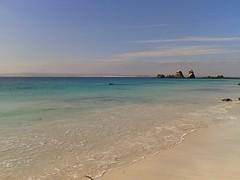 Playa Tijeras (Mighty Barbs) Tags: ocean naturaleza beach nature landscape playa paisaje pacificocean waters puntadechoros océano naturezza isladamas regióndecoquimbo océanopacífico semidesierto