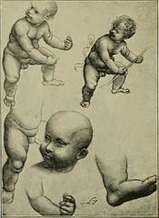 Anglų lietuvių žodynas. Žodis adoptive reiškia a 1) įsūnytas; 2) imlus lietuviškai.