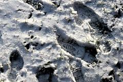 Footprints (aenigmats) Tags: snow footprints