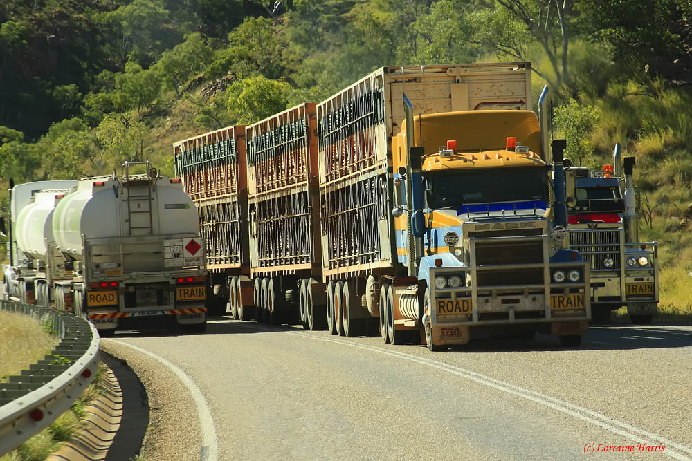 The World S Best Photos Of Australian And Trucks Flickr