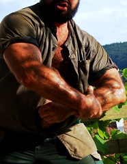 farmer strength (Farmerbaer) Tags: rural beefy burly buff bearded sturdy brawny muscled melker milker hairychested stocky swissfarmer schweizerbauer melkerbluse