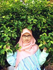 IMG_1019 (Alazhaarp) Tags: pink orange sun tree green beach nature girl grass mobile indonesia glasses coast java leaf veil south hijab queen jogja yogyakarta yogya jawa ramadhan pantai 4s daun iphone moslem pohon tazu kerudung parangteritis litely