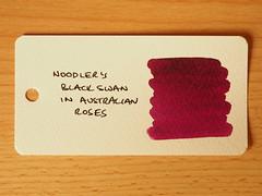 Noodler's Black Swan in Australian Roses