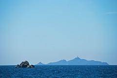 Îles Sanguinaires