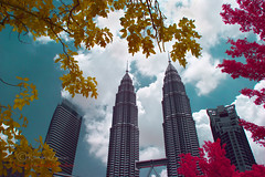 We are family.  Canon 7D Autumn infraRed. (Kamaruz Zaman) Tags: travel autumn tourism canon malaysia colourful klcc twintower falsecolour petronastwintower canonphotography artofnature infraredcolour canon7d autumninfrared autumnbyazamalwi