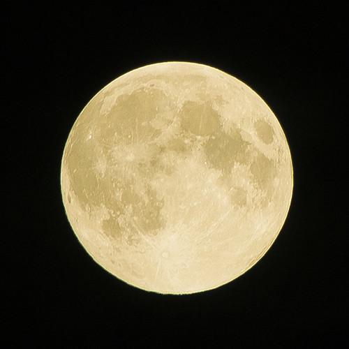 Ehi, ehi, vuoi darmi vita sotto la luna