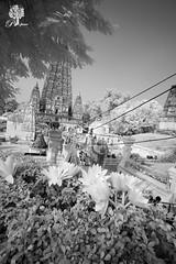 India_0146