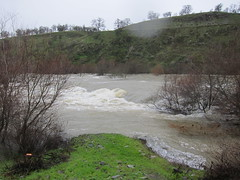 High Flow on the Tuolumne River (FISH-BIO) Tags: high flow tuolumne river tuolumneriver