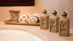 Datai_Langkawi-10.jpg (Nannie Natcha) Tags: datai langkawi malaysia resort hotel accommodation green architecture travel holiday bathroom shampoo conditioner soap bathtub brown