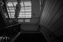 Museo Bellas Artes (javi.hope) Tags: canon reflex t6 chile museo bellas artes blackandwhite blackwhite