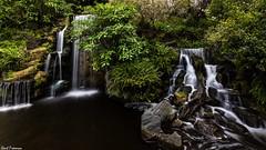 Meyberg Waterfall - LA Arboretum (Kent Freeman) Tags: meyberg waterfall la arboretum los angeles california canon eos 5d mark iii ef 1740mm f4 l usm