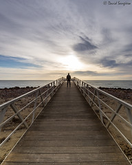 The Walker III. (dasanes77) Tags: canoneos6d canonef1635mmf4lisusm tripod landscape seascape cloudscape walkway sea ocean clouds longexposure wood calm sunrise xilxes castellón perspective reflections shadows