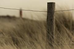 Dutch dunes (lg-photographic) Tags: warm color colors farbe farben wood wooden holz hölzern outdoor drausen north sea nordsee grass gras dunes dünen fence zaun landscape landschaft sand lighthouse leuchtturm nature natur den helder julianadorp netherlands niederlande nikon d5200