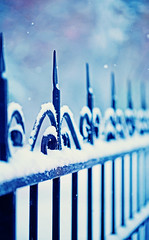 metal decorative fence fragment with snow (♥Oxygen♥) Tags: abstract background bare beautiful bound branch cast cold cover curve decorative design detail fence fog forge form fragment frost frozen garden gate heavy iron metal outdoor outside park part pattern railing residence season seasonal segment shape silhouette snow snowy texture tree urban view wall weather white winter frame forging
