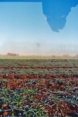 deerstand (Jan Meifert) Tags: kodak ultramaxx 400 analogue analog film 35mm double multi multiple exposure mehrfachbelichtung doppelbelichtung deerstand high seat hochsitz jagsitz jan meifert