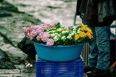 Flower Seller (SRAphotography) Tags: flower spring street sea water rained rainy rain wet plant color colorful nikon nikond5100 nikonphotography 85mm 18g