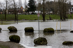 2017-03-29 The river's rising! (Mary Wardell) Tags: river willametteriver oregoncity clackamettepark park flooding canon 60d