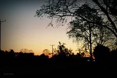 Esperar todo el día hasta que no llegas... (Conserva tus Colores) Tags: chile conservatuscolores sunset atardecer naturaleza contraluz silueta silhouette lovenature love tiempo surdechile nostalgia canon personal carretera landscape bokeh