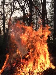 Osterfeuer (petermüller16) Tags: holz campingplatz feuer ruhrpott ruhrgebiet tradition germany deutschland datteln osterfeuer
