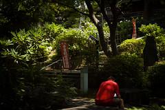 上野の赤 - Red in Ueno (2 Funky) Tags: red color green crimson japan tokyo ueno flag snapshot streetphotography 東京 backside 上野 街 町 赤 スナップ streetsnap 背中 rd1s leicasummicron35mmf20iii