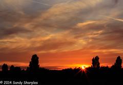 Sunset at Full Moon rising (Sandy Sharples) Tags: trees sunset sky orange sun silhouette canon manchester scenery magic horizon meadows july honey lensflare marble drama