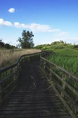 Walkway (Martin T Eyles) Tags: nikon dam mm nikkor cambridgeshire 18105 welches manea d5100