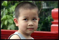 Viaje Vietnam 2014 (Mikel Vidal) Tags: viaje trekking long vietnam chi ha ho minh tam homestay sapa noi coc indochina bahía 2014 conchinchina