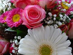 Bouquet (Michael Schnborn) Tags: flowers bouquet hx400v dschx400v hx400