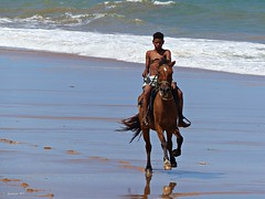 Arre, arre caballito... (Juanjo RS) Tags: brasil caballo playa verano praiadoforte salvadordebahia ltytr2 ltytr1 ltytr3