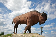 Roadside Attraction (scienceduck) Tags: camp sculpture ontario canada buffalo july wideangle earl roadsideattraction bison 2014 scienceduck earlton mikecamp bisondunord