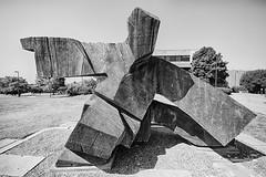 Tai-chi figure (Kansas Poetry (Patrick)) Tags: kansas lawrencekansas kansasuniversity universityofkansas patrickemerson patricknancyforever