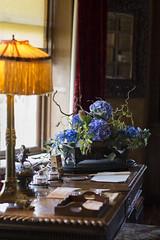 (Elinor Q-P) Tags: desk stately quex powellcotton