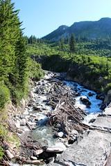 Stevens Creek (daveynin) Tags: creek river nps mount rainier deaftalent deafoutsidetalent deafoutdoortalent