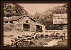 Cade's Cove 1999-1-007 F (the Gallopping Geezer '4' million + views....) Tags: park old bw white black building abandoned film barn canon fence blackwhite tn display decay tennessee 1999 structure historic faded worn weathered derelict decayed geezer corel cadescove cabib