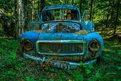 relaxed drive (Geert Weggen) Tags: old blue nature car forest person rust driving seat rusty human vehicle geert weggen ilobsterit hardeko