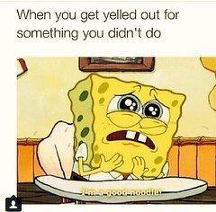 When that one #teacher trying to put you on blast #spongebob #lol #goodnoodle #snapchat #instagram (www.midnightgirl) Tags: lol teacher spongebob goodnoodle instagram snapchat