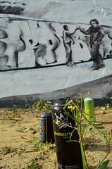 detail from Chum101's tribute to ROBBO (Di's Free Range Fotos) Tags: uk england detail graffiti brighton tribute cans blackrock robbo spraycans chum101 graffitiking kingrobbo teamrobbo wildseasideflower