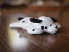 EM100018.jpg (mtfbwy) Tags: macro struffed toydog