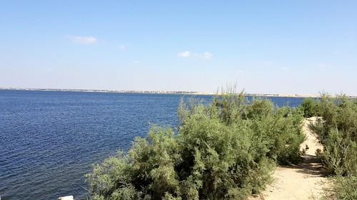 Wonderful place #fishing #lake #mariout #alexandria #fish #sun #beautiful #view #green #blue #sky #place #perfect #view #landscape
