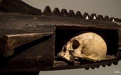 Untitled (SlocumPhotography) Tags: skull 28mm lacma pentaxsmc pacificart samsungnx