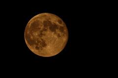 Mjesec (2014)
