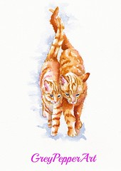 Young Love (GREY PEPPER ART) Tags: cats pets art cat ginger kittens watercolour marmalade
