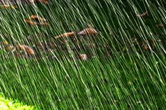 RISCOS DE GUA -  (72) (ALEXANDRE SAMPAIO) Tags: light luz gua brasil cores arte amor natureza paz vida contraste beleza fotografia formas desenhos franca cor fantstico aura desenho espao deus experimento criao energia iluminao geometria realidade universo irreal composio multiplicidade imaginao divino esttica delicadeza sensibilidade pontodevista manchas possibilidade experimentao invisvel possibilidades fragilidade visvel transcendncia irrealidade alexandresampaio riscosdegua