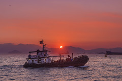 A boat in dusk (mikemikecat) Tags: sunset sea summer nature water landscape hongkong scenery dusk sony 夕陽 夕暮れ 日落 magicmoment 夕焼け 黃昏 夕空 綺麗 西九龍海濱長廊 a7r sel2470z